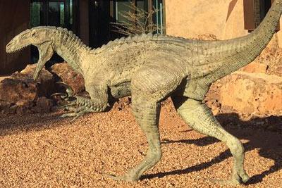 Air Tours of Australia | Australian Age of Dinosaurs